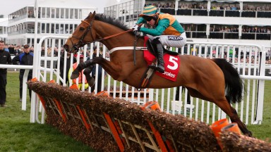 Cole Harden on the way to victory in the 2015 World Hurdle after having had a wind operation