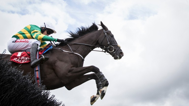 Le Richebourg: must take step up in class in his stride if he is to be a Cheltenham horse