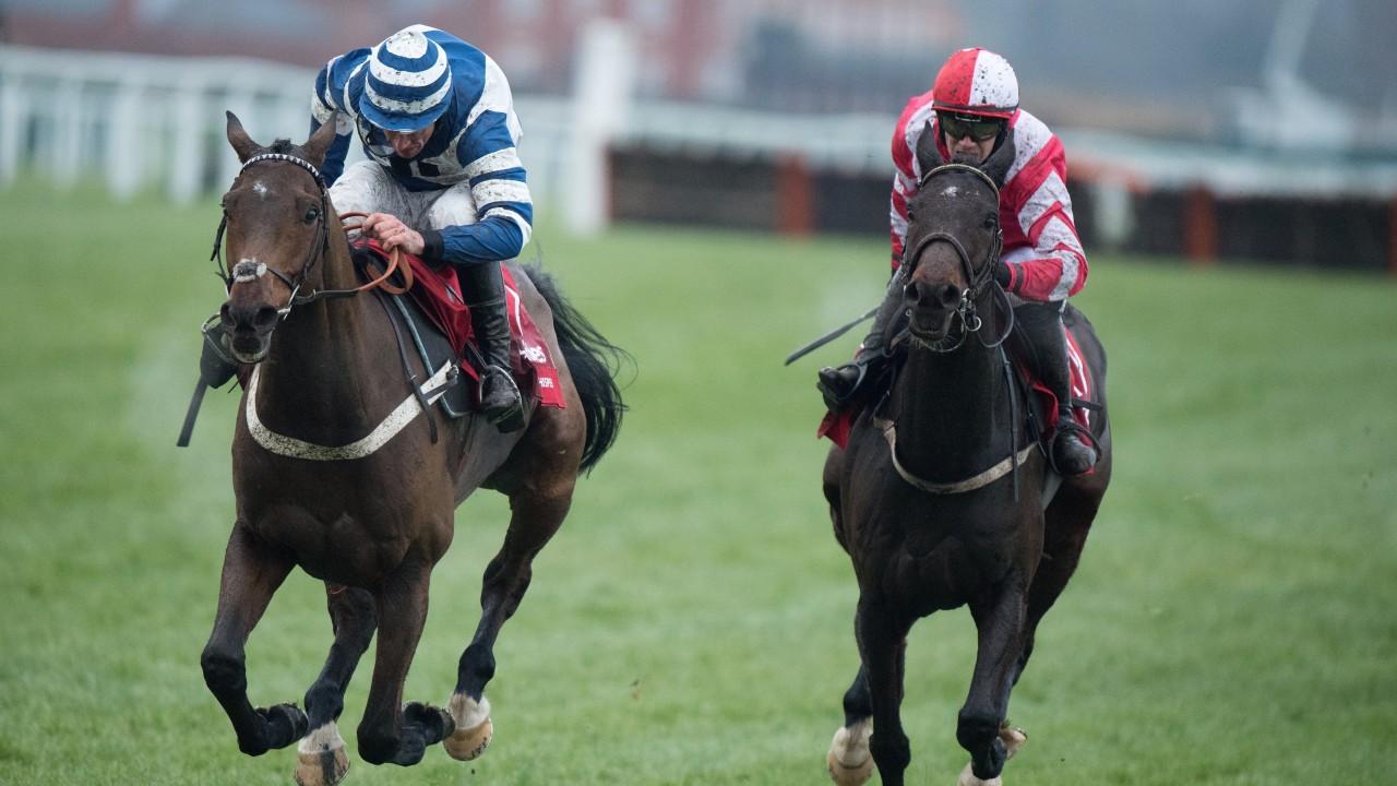 Racing post trophy betting odds british open odds ladbrokes betting