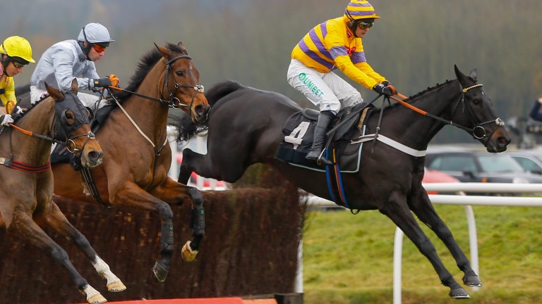 Gold Present (far): out to boost his Grand National claims at Ascot
