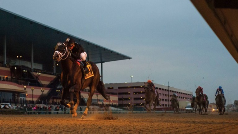 Sharp Azteca storms clear to win the Cigar Mile