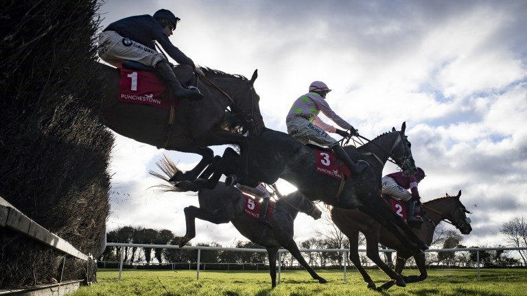 Punchestown: the Pick 6 pool could rise to €1m at the track