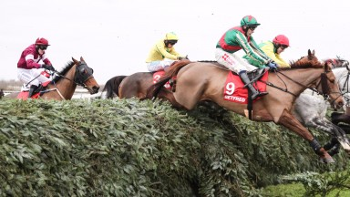 Vieux Lion Rouge (9): returning to Aintree on Saturday