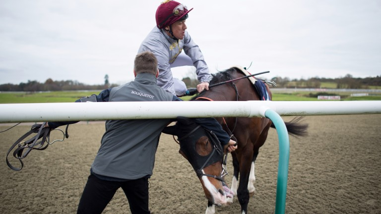 Easy tiger: a boisterous Toast Of New York bucks off Frankie Dettori before his winning return at Lingfield