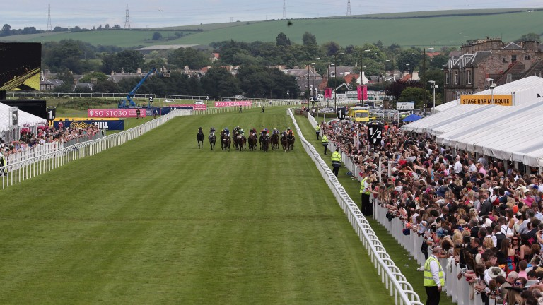 Musselburgh (pictured) and Bangor were joint recipients of the ROA Gold Standard Small Racecourse of the Year award