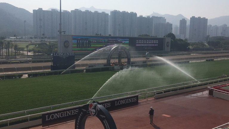 Watering taking place on the Sha Tin turf track
