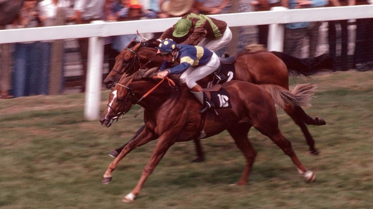 Grundy (near side) beats Bustino in the 1975 King George VI and Queen Elizabeth Stakes – widely regarded as the race of the century