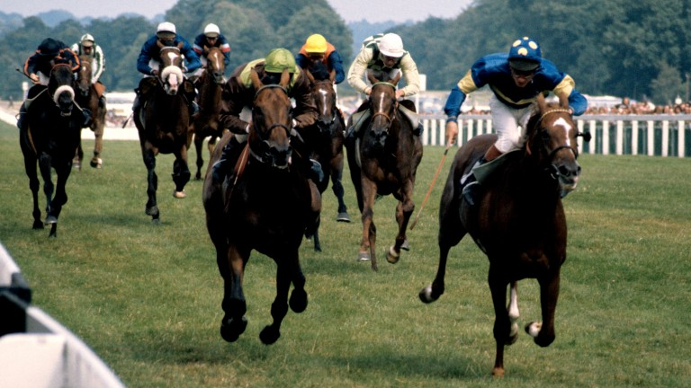 Grundy and Pat Eddery (right) win the 1975 King George VI and Queen Elizabeth Stakes from Bustino and Joe Mercer (left)
