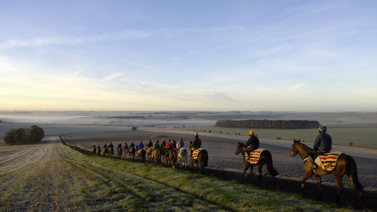 The glorious Lambourn Valley, home to Peter and Bonk Walwyn for more than half a century