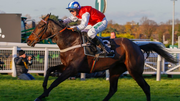 On The Blind Side: ruled out of Cheltenham