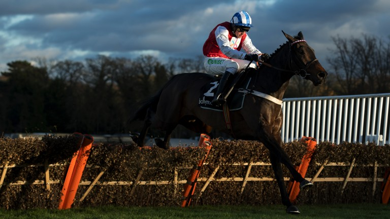 Another blinding performance: it's three from three over obstacles as On The Blind Side gallops away with the Winter Novices' Hurdle
