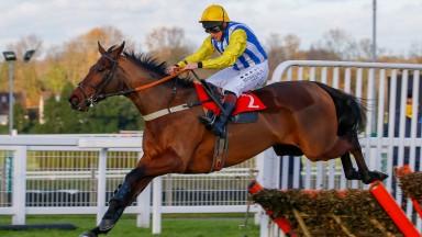 Sussex Ranger: yet to be beaten over hurdles
