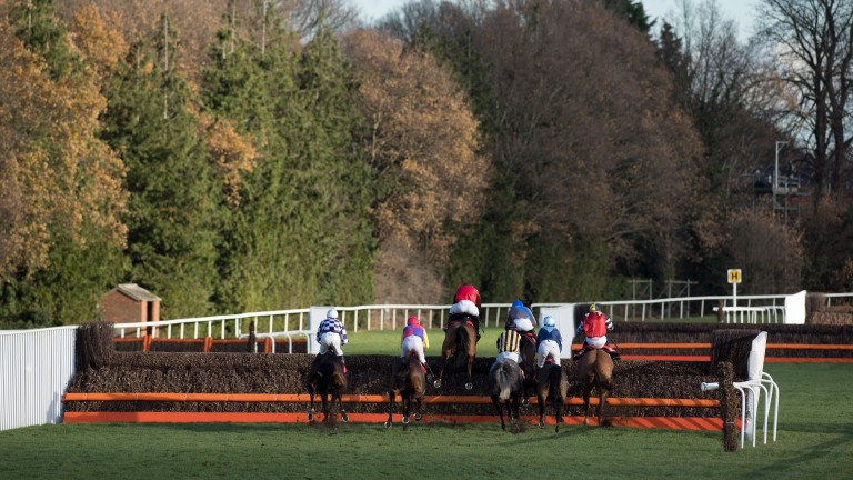 Mustmeetalady managed to escape Sandown after unseating his rider at the first fence