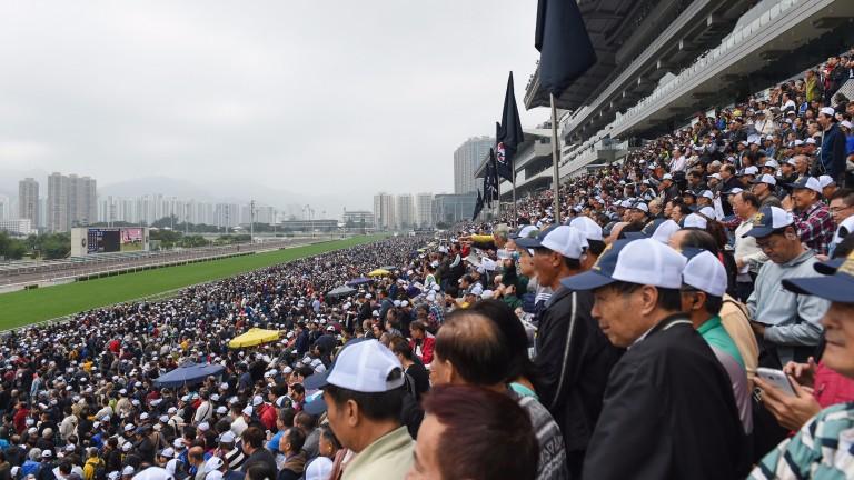 Racing takes place at Sha Tin on Sunday