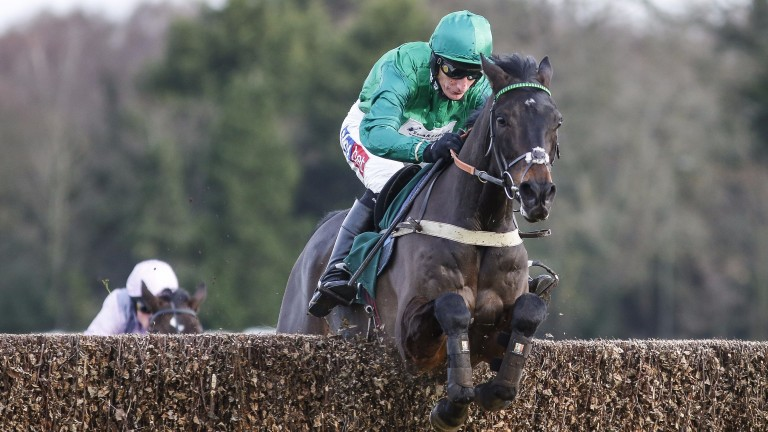 Sceau Royal and Daryl Jacob on their way to winning the Henry VIII Novices' Chase
