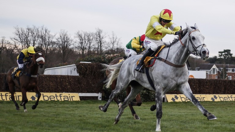 Politologue: in line for the Betfair Exchange Chase, better known as the Game Spirit