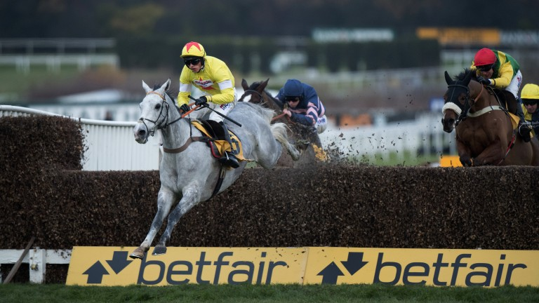 Flying grey: Politologue and Harry Cobden clear the last in the Tingle Creek before sealing a tenth race victory for trainer Paul Nicholls