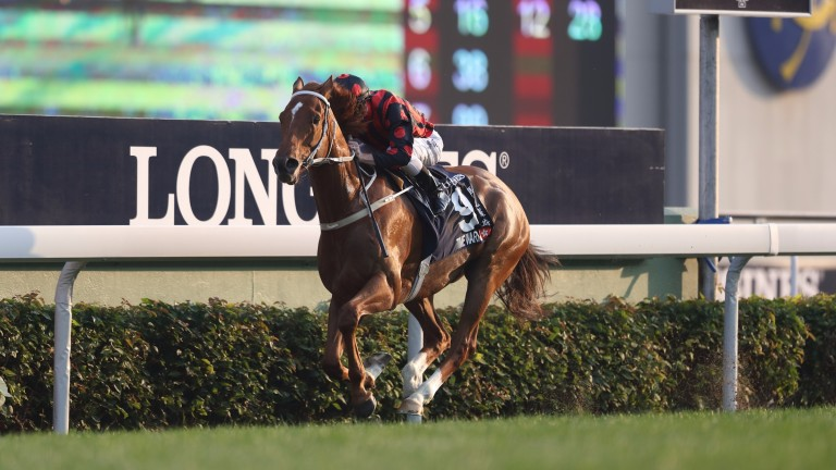 Time Warp lands the Hong Kong Cup under Zac Purton