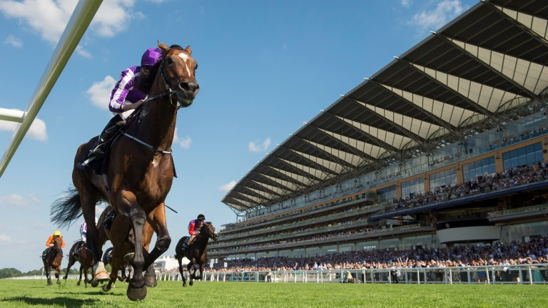 Highland Reel wins the 2016 King George VI and Queen Elizabeth Stakes at Ascot under a masterful front running ride from Ryan Moore