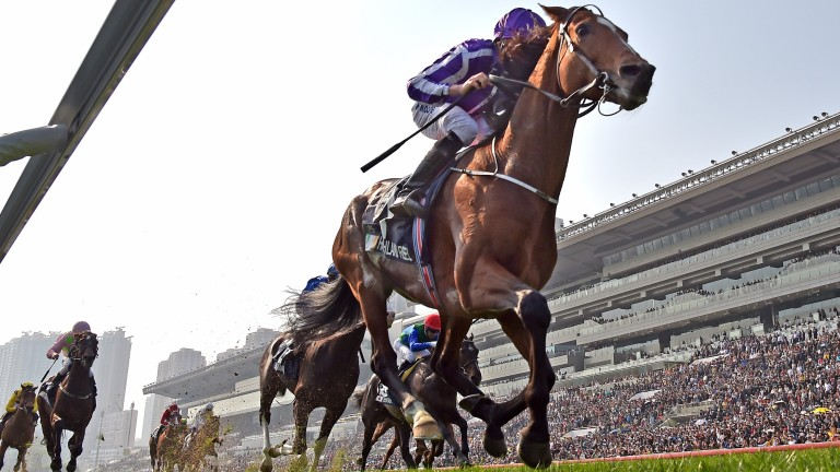 Highland Reel: bowing out in victory in Hong Kong