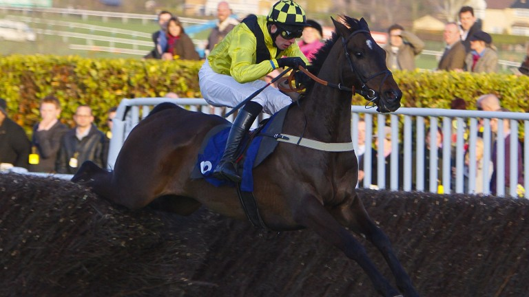 Steven Clements on his way to winning the Johnny Henderson Grand Annual Chase aboard Oiseau de Nuit