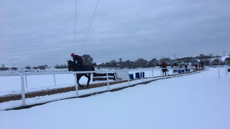 The scene this morning on the gallops at Dan Skelton's Warwickshire stable