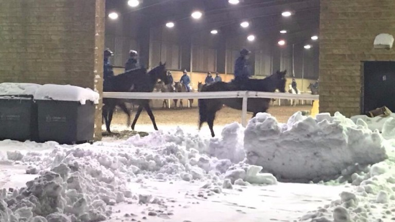 Snow piled high outside the indoor schooling area at Jonjo O'Neill's Jackdaws Castle stable