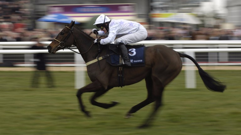 Black Jack Ketchum, bred by Ned Morrissey, wins the Spa Novices' Hurdle at the 2006 Cheltenham Festival