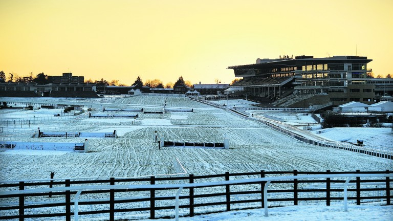 Snow on the ground at Cheltenham