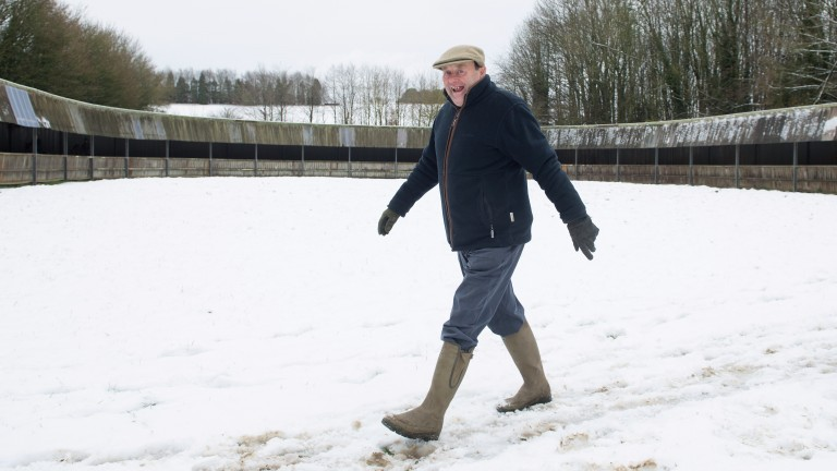Snow man: Nicky Henderson in full stride at Seven Barrows on Monday
