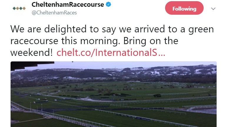 A tweet from Cheltenham racecourse on Wednesday morning