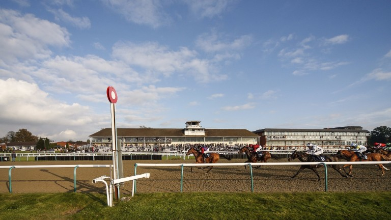 Lingfield host an interesting card on Thursday