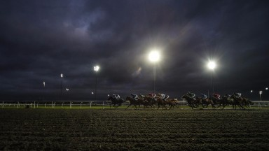 SUNBURY, ENGLAND - NOVEMBER 29: A general view as runners make their way towards the back straight at Kempton racecourse on November 29, 2017 in Sunbury, United Kingdom. (Photo by Alan Crowhurst/Getty Images)