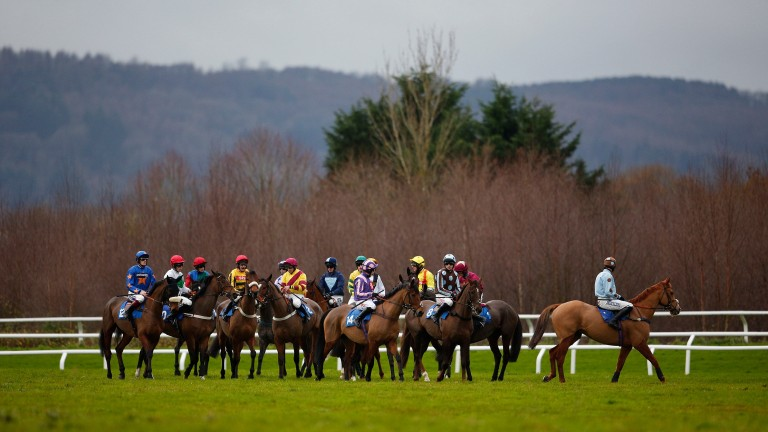Taunton: seven-race card has fallen to the weather