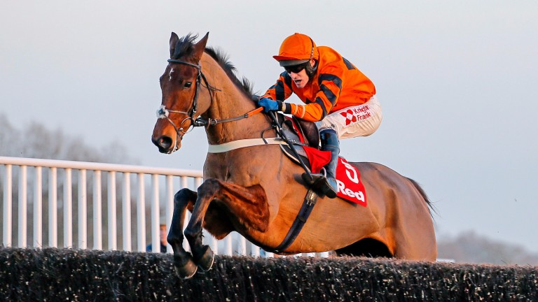 Thistlecrack: ruled out of the Gold Cup for the second year in a row