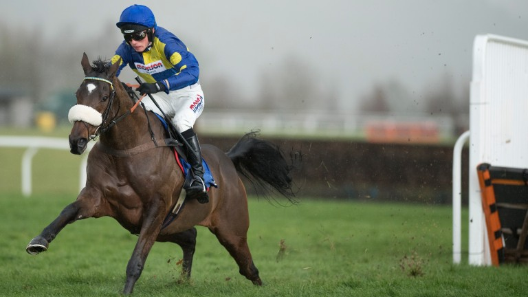 Sit tight: Harry Cobden and Brahms De Clermont survive a blunder at the final flight