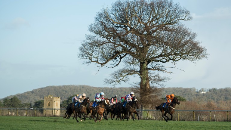 Clear skies: the action in the 2m3f handicap hurdle unfolds against a glorious backdrop