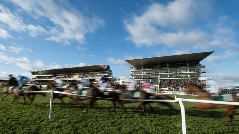 Cheltenham: stage the Caspian Caviar Gold Cup on Saturday