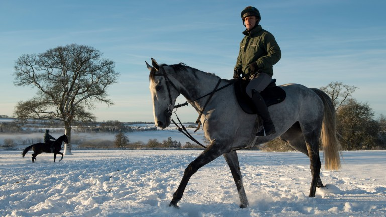 Bristol De Mai: well-beaten in the King George but was found to be suffering from ulcers