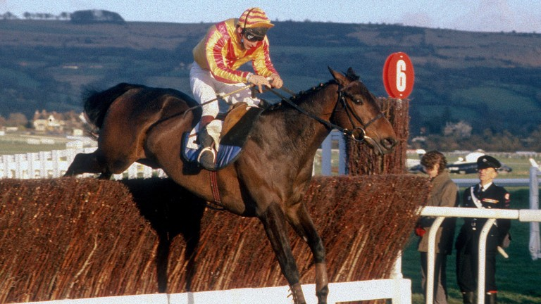 Vodkatini is on a going day as he lands the Grand Annual Chase at Cheltenham in 1988