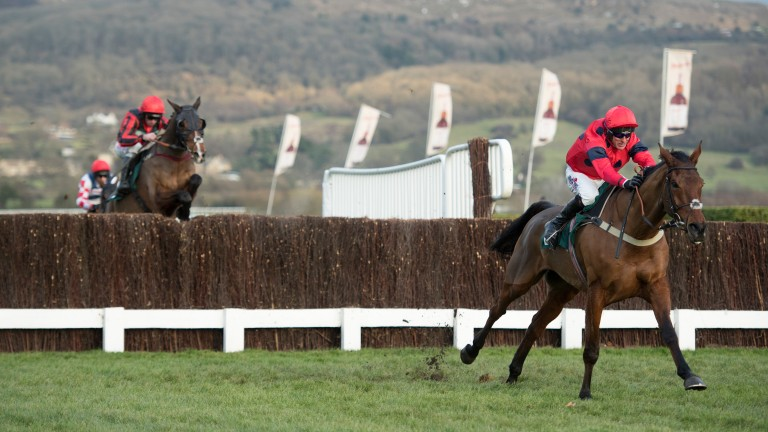 Robinsfirth motors home in the Grade 3 handicap chase at Cheltenham on Friday