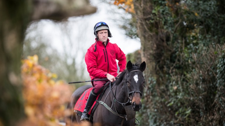 Robbie Power: the Gold Cup winner has been nominated for the RTE's Sports Person of the year award