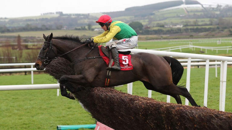 Sizing John: looks the one to beat in this season's Cheltenham Gold Cup