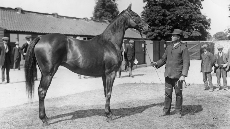 Sceptre: before her four Classic wins the filly was allotted 6st 7lb in the 1902 Lincoln and her owner, the exuberant Robert Sievier, stood to win millions. She was beaten by a head