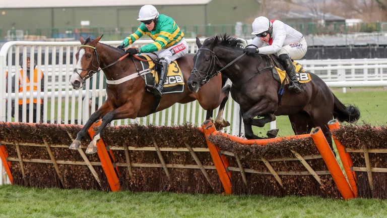 Apple's Shakira (left): another smooth success under Barry Geraghty