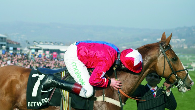 Sire De Grugy and Jamie Moore after their 2014 Champion Chase victory