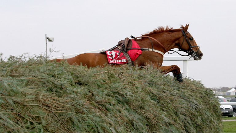 SIRE DE GRUGY clears The Chair after falling in the Melling chase at Aintree 10/4/15 Photograph by Grossick Racing Photography 0771 046 1723