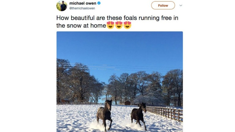 In a week where snow caused havoc with the racing programme, Michael Owen managed to find one positive with this stunning picture.