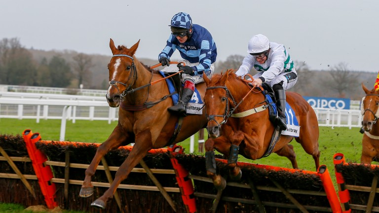 Rock The Kasbah (left): 11-1 for the Coral Welsh Grand National but not a certain runner