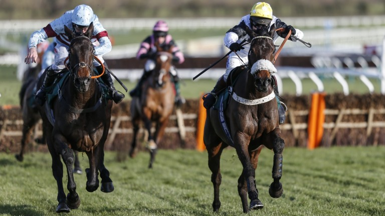 Western Ryder (yellow cap): the promising hurdler was in command at Cheltenham on Friday